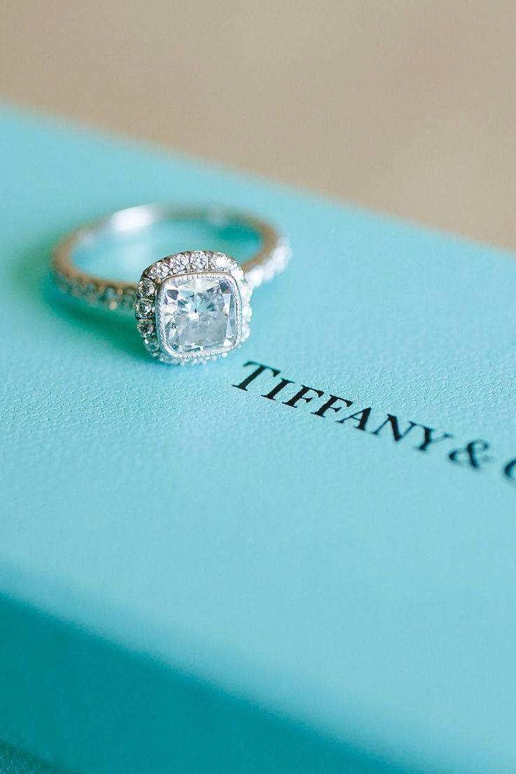 2108 Best When I Tie The Knot Images On Pinterest | Marriage Throughout Tie The Knot Engagement Rings (Gallery 6 of 15)