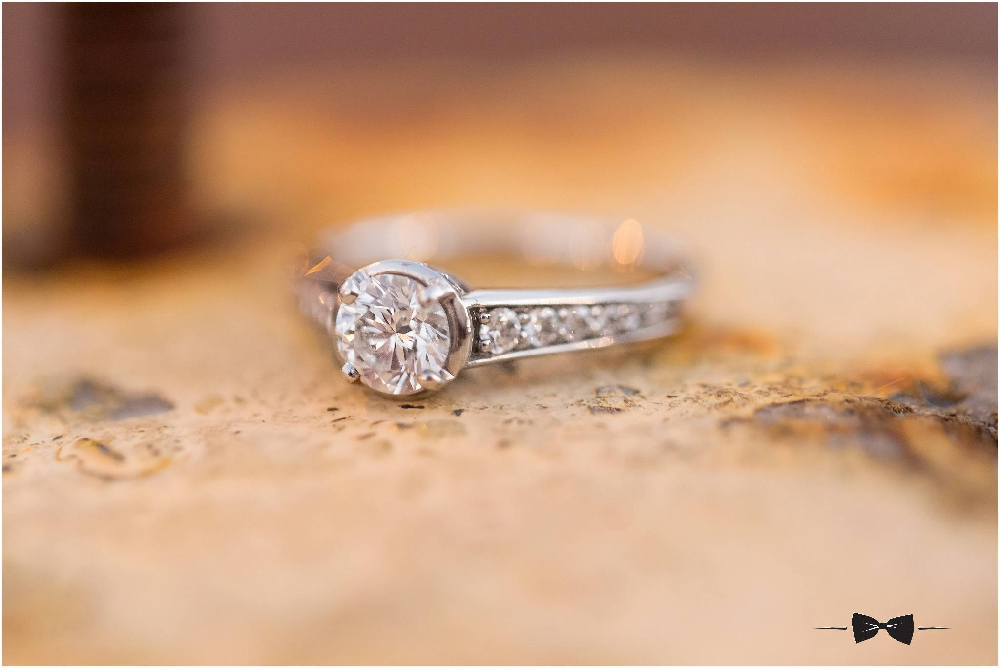 Lindsey + Preston – Washington, Dc Engagement With Regard To Washington Dc Engagement Rings (View 9 of 15)