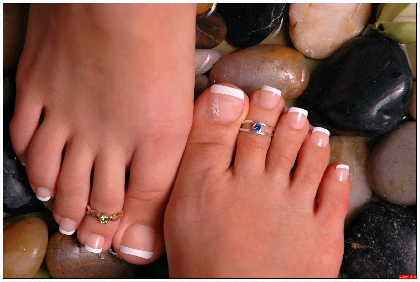 Featured Photo of Women Toe Rings