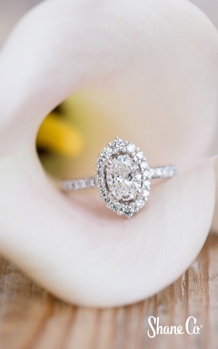 Diamond Halo Engagement Ring In Platinum In 2019 | Halo Rings In Newest Sparkling Halo Rings (View 17 of 25)