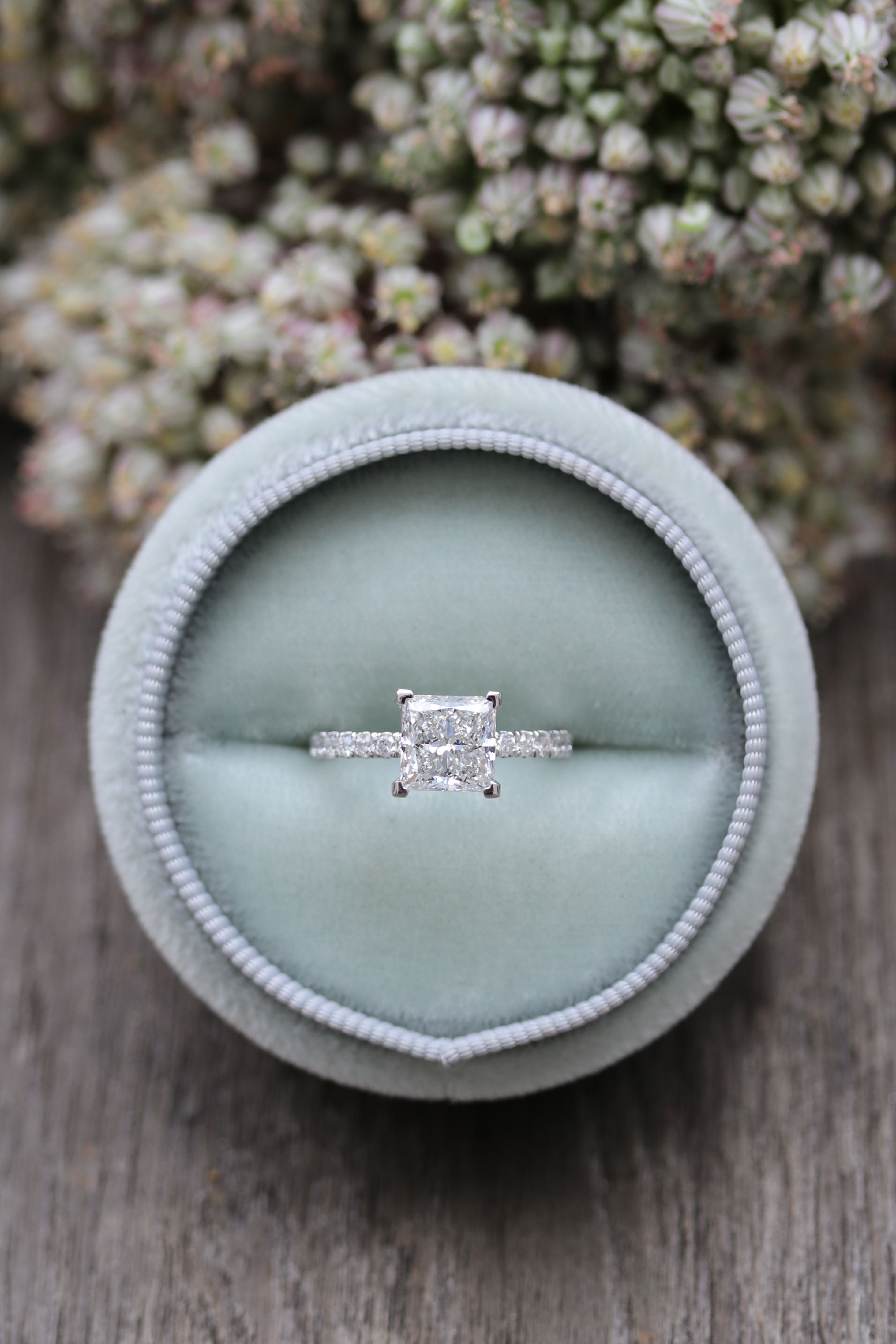 Four Prong Pavé Setting In 2019 | Diamond Band Rings | Engagement Intended For Newest Sparkling Pavé Band Rings (Gallery 22 of 25)