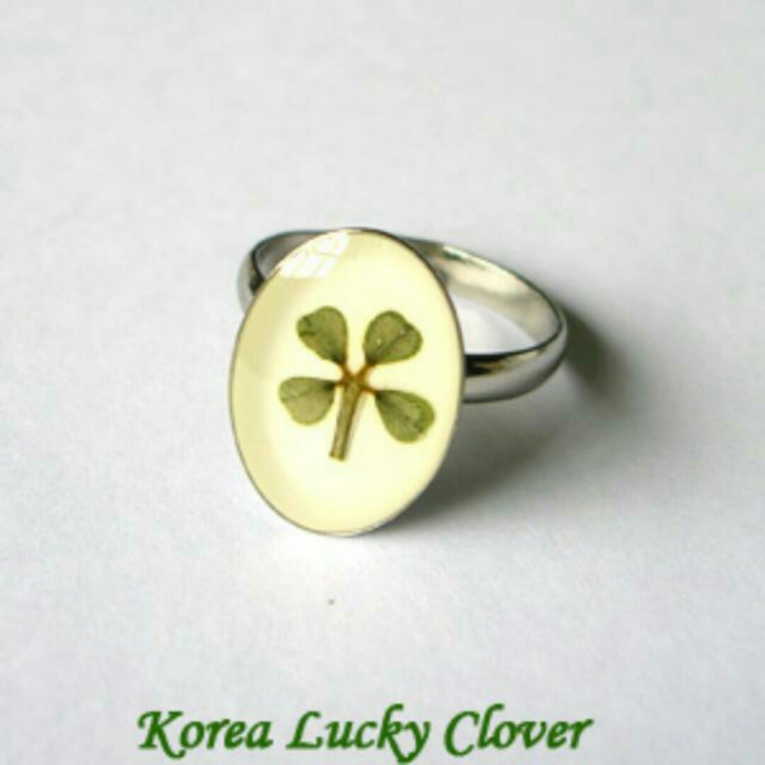 #mrtraffles Authentic White Gold Plated Korea Lucky Four Leaf Clover Rings  Selling Below Cost! Pertaining To Recent Lucky Four Leaf Clover Open Rings (View 1 of 25)