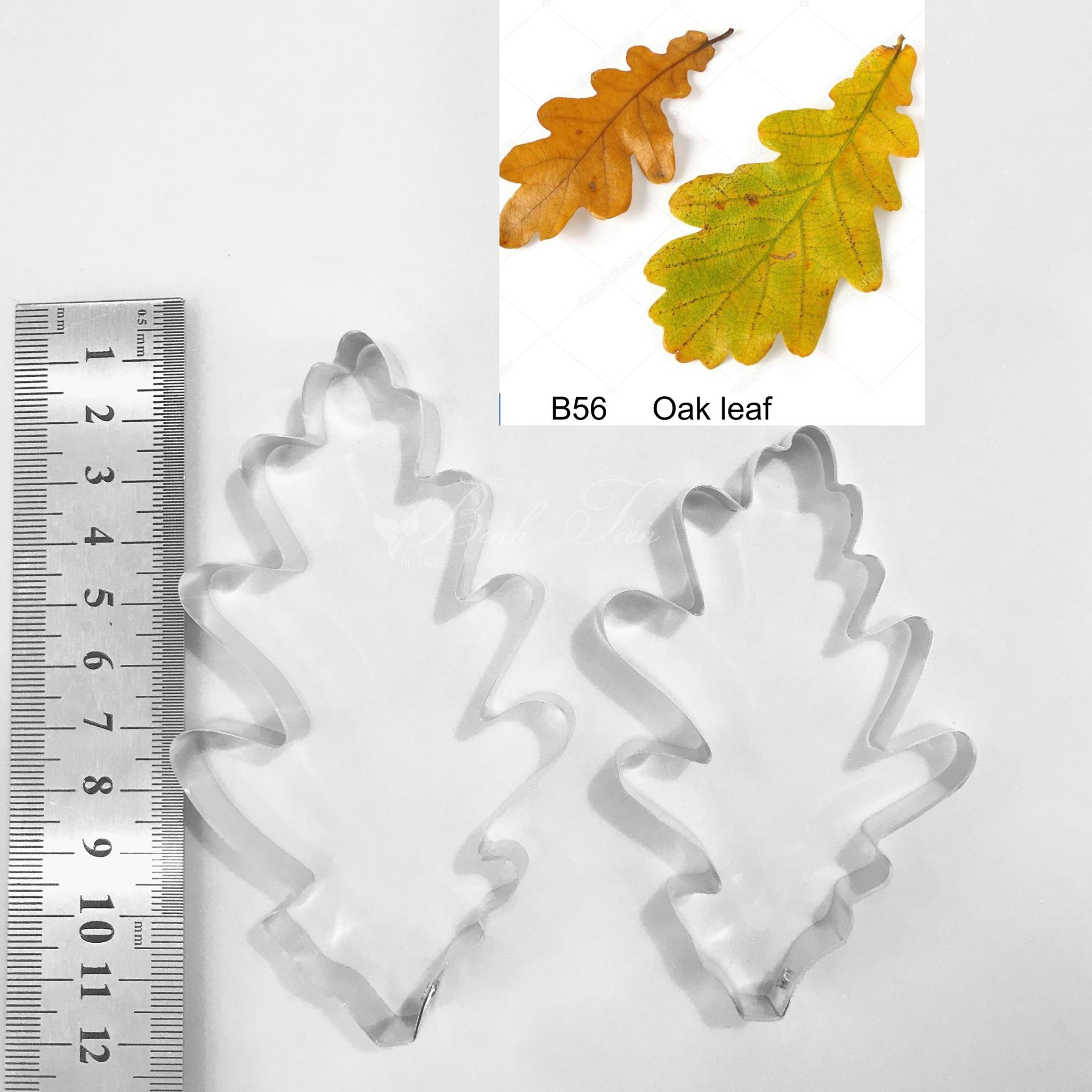 Oak Leaf – Double Veiner Real Petal Leaf Flower Silicone Mould Mold Cutter Artificial Botanical For Gumspate Clay Flower Fondant Mastic With Regard To 2017 Oak Leaf Double Rings (View 5 of 25)