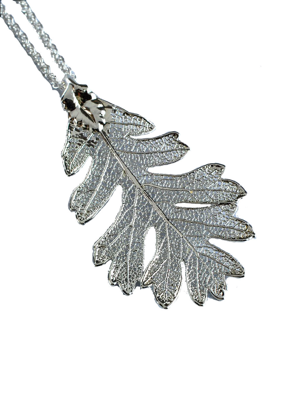 Oak Leaf In Silver – Real Leaf Pendant For Most Current Oak Leaf Necklaces (Gallery 24 of 25)