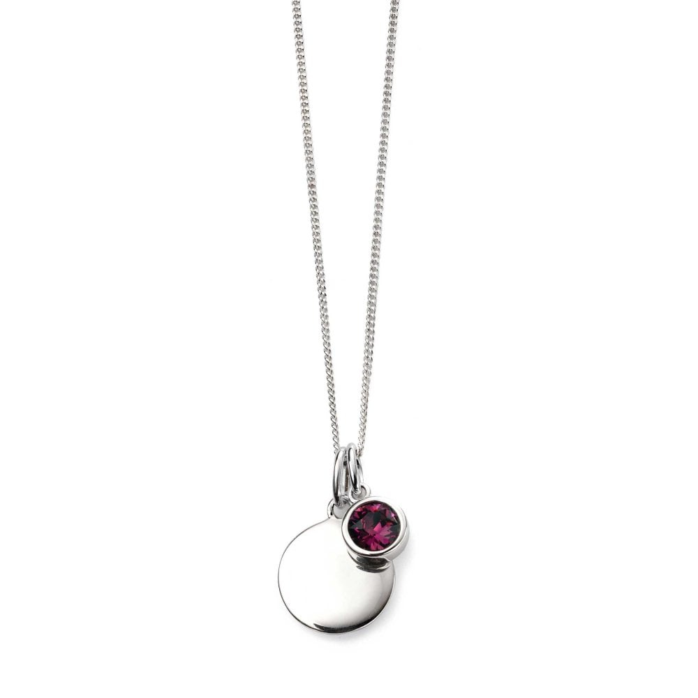 Silver February Birthstone Swarovski Pendant & Chain With Most Current Purple February Birthstone Locket Element Necklaces (Gallery 2 of 25)