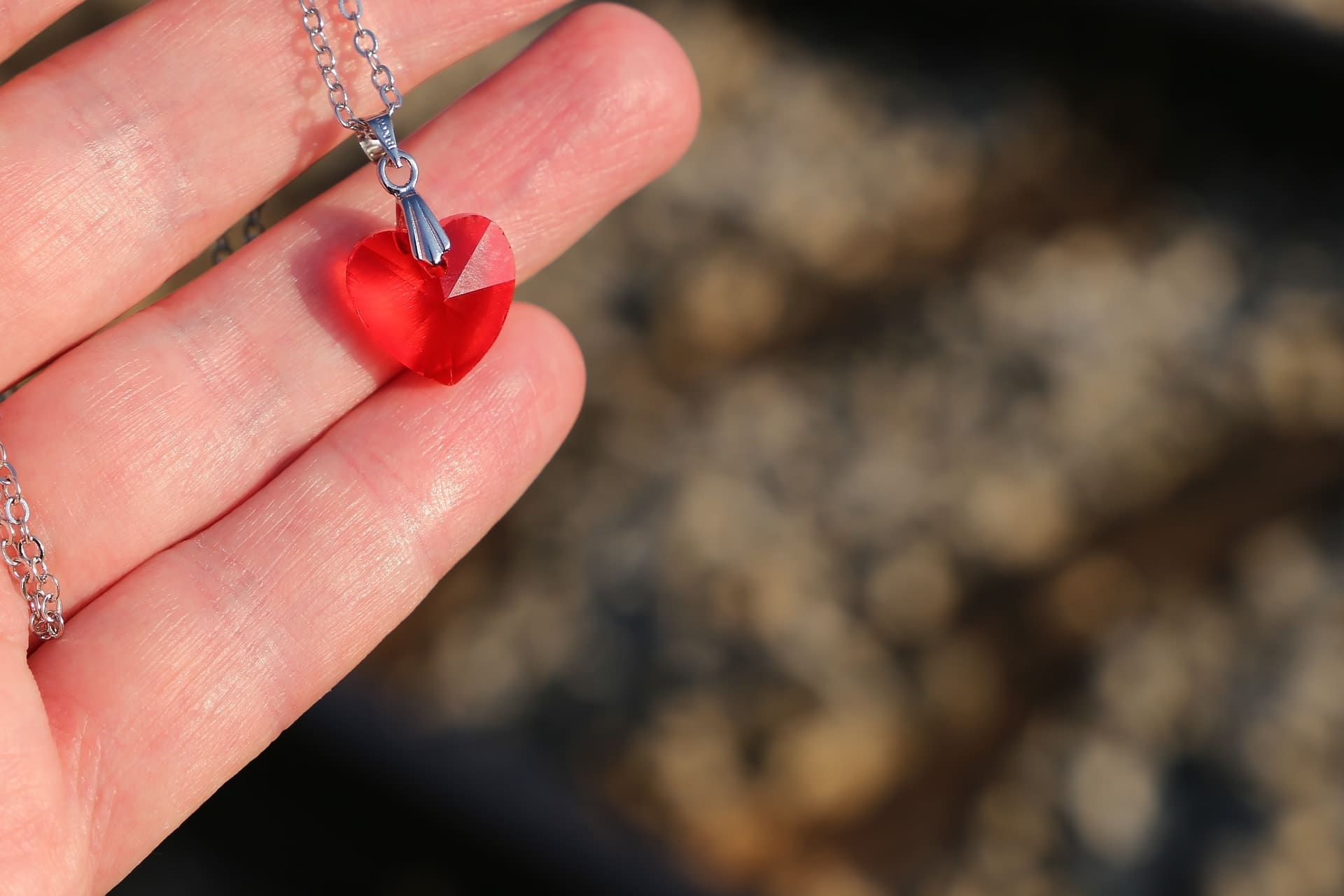 The Top 15 Heart Necklaces For Your Girlfriend To Gift Her With 2019 Sparkling Gift Locket Element Necklaces (Gallery 23 of 25)