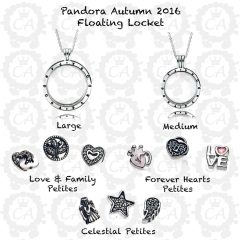 Love & Family Petite Locket Charms Necklaces